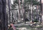 Waldfriedhof Gloggnitz